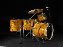 Pearl EXR Special Edition Tiger Eye (No Longer in Production!) #EXR825WFC438