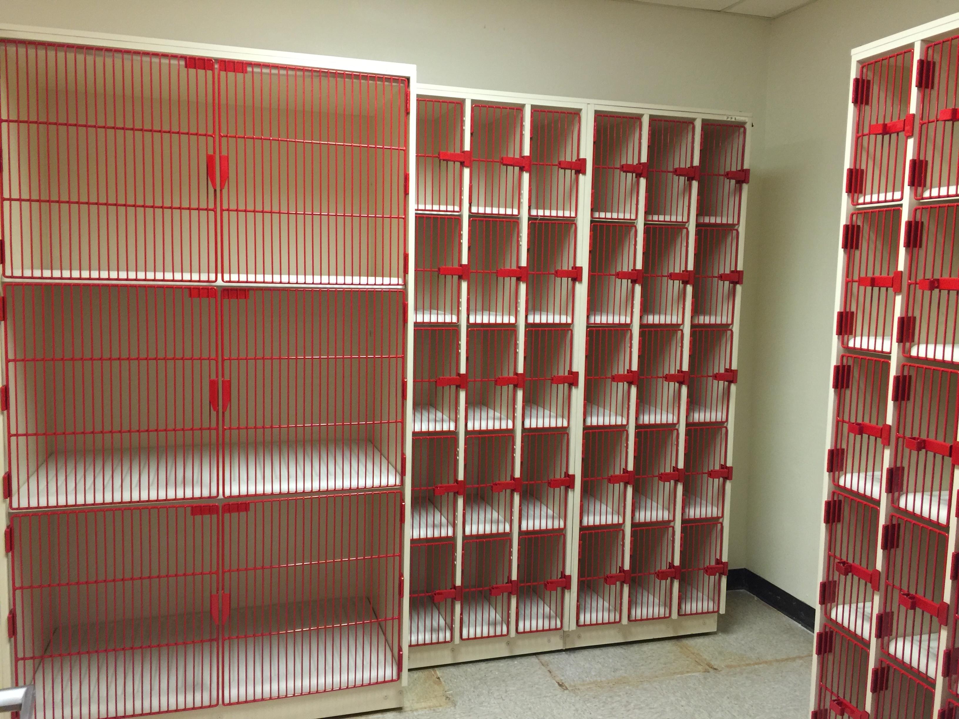 Gentil Musical Instrument Storage Cabinets Gallery Storage Cabinets Music  Equipment . Musical Instrument Storage ...